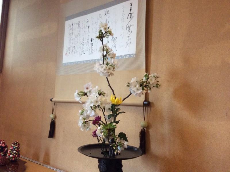 紀北町  花  熊野桜